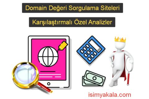 Domain Değeri Sorgulama Siteleri (Örnekli Analizler)